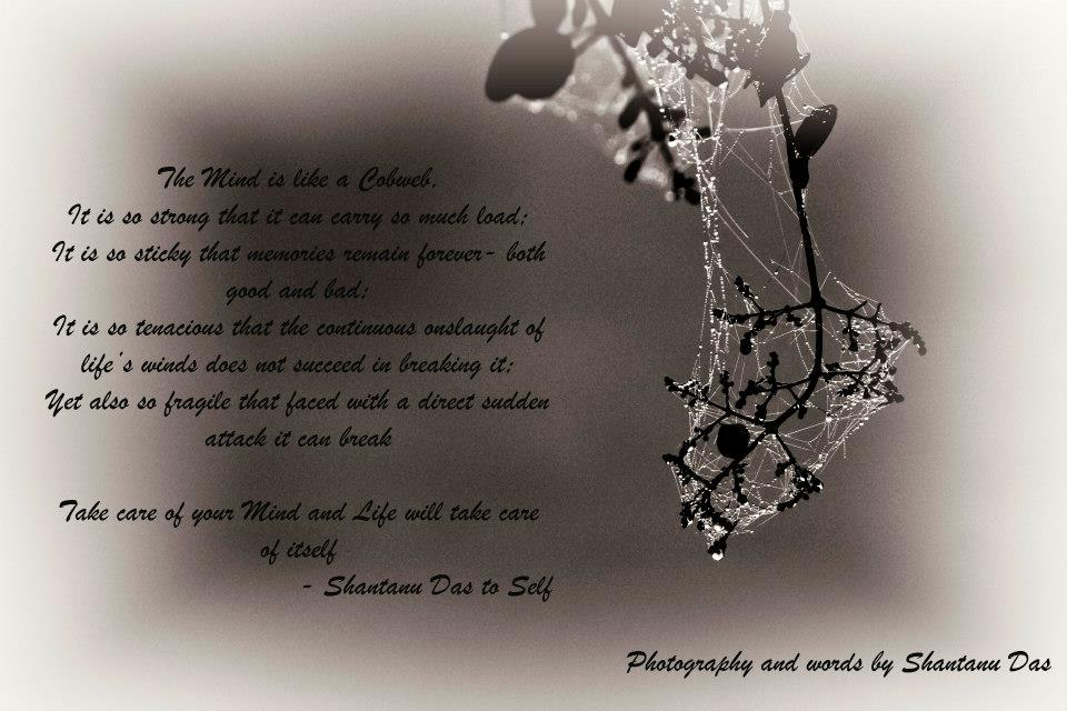 Mind is like a Cobweb